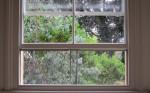 Sash Window Screen Keeps Rooms Bug Free